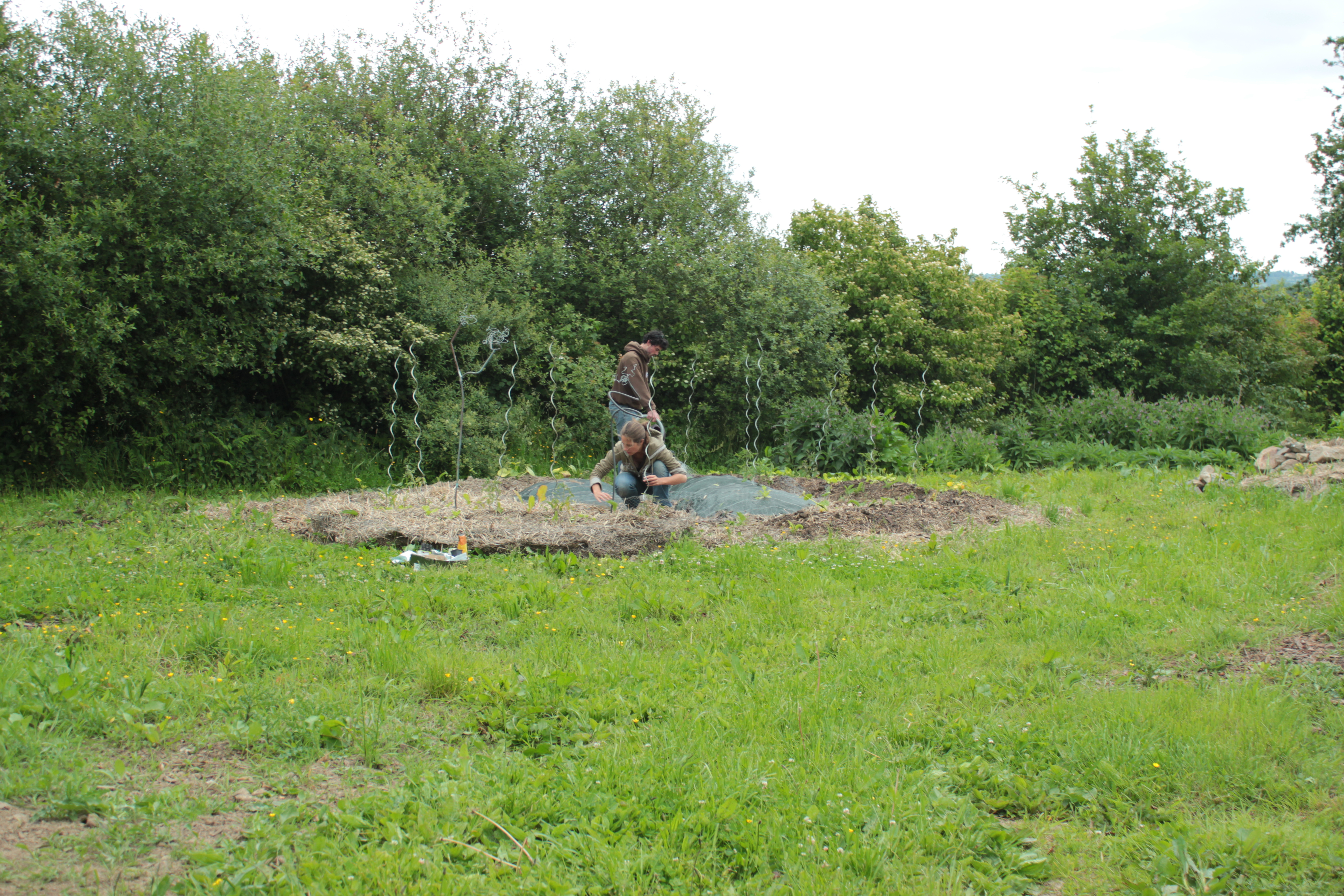Le jardin de l association for Association entretien jardin